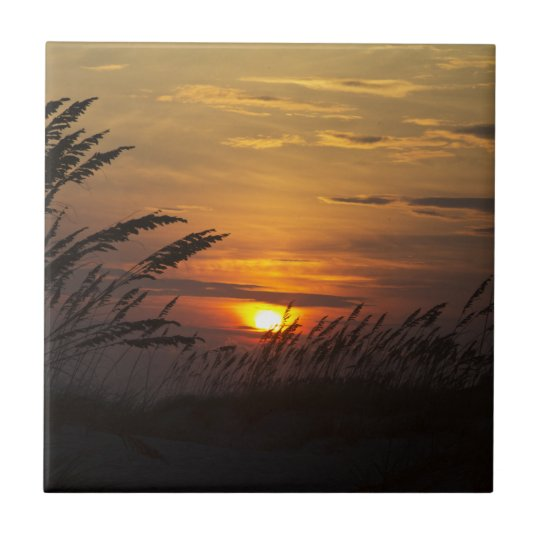 Sea Grass Sunset Ceramic Tile