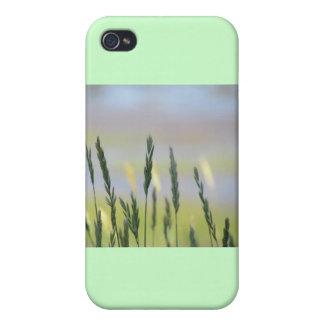 SEA GRASSES iPhone 4/4S CASE