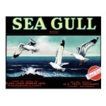 """Sea Gull"" Brand  Postcard"