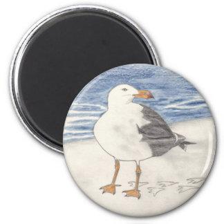 SEA GULL magnet (round)