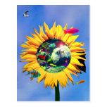 Sea gull paradise postkarten