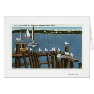 Sea Gulls and Sailboats Along the Waterfront Card