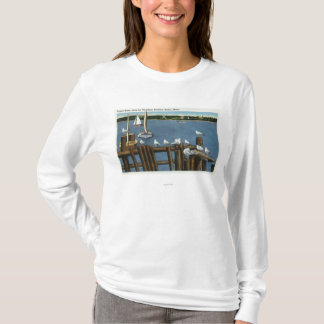 Sea Gulls and Sailboats Along the Waterfront T-Shirt