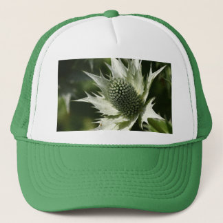 Sea Holly Trucker Hat