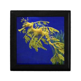 Sea horse gift box