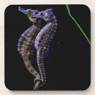 Sea Horses (Seahorses) Coaster