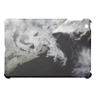 Sea ice fills the Gulf of St Lawrence iPad Mini Cover