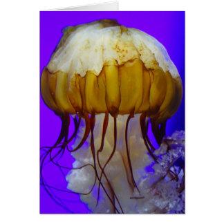 Sea Jellies Greeting Card