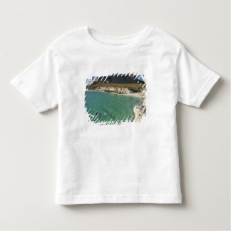 Sea kayaker on the Gulf of California at Isla Toddler T-Shirt