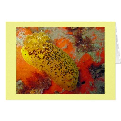 Sea Lemon Card