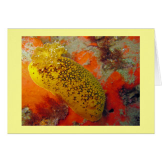 Sea Lemon Note Card
