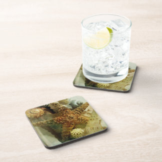 Sea Life Apothecary - 1 Drink Coasters