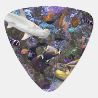 Sea Life Guitar Picks