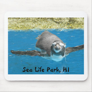 Sea Life Park Penguin Mouse Pad
