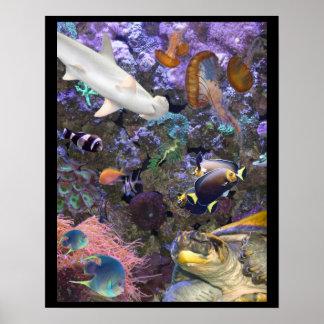 Sea Life Poster
