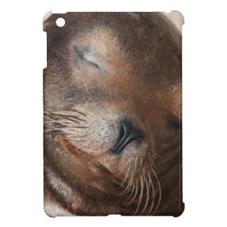 sea-lion-113.jpg cover for the iPad mini
