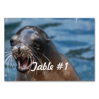 sea-lion-128.jpg table cards
