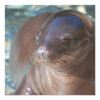 Sea Lion Baby Personalized Invitation
