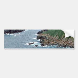 Sea Lion Haulout at Sugarloaf Island Car Bumper Sticker