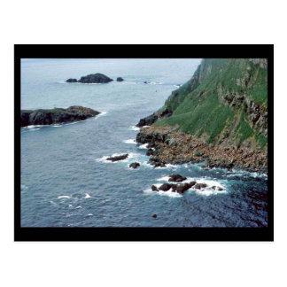 Sea Lion Haulout at Sugarloaf Island Post Card