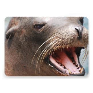 Sea Lion Invite