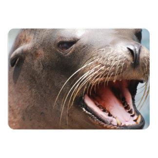 Sea Lion Invitations