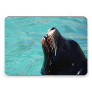 Sea Lion Custom Invites
