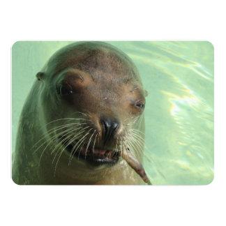 Sea Lion 13 Cm X 18 Cm Invitation Card
