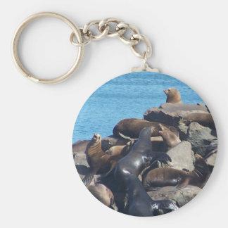 Sea Lion Keychain