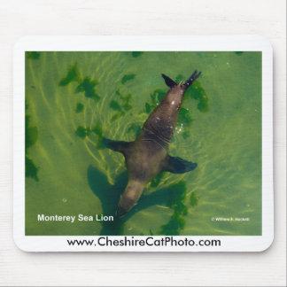 Sea Lion Monterey California Products Mousepad