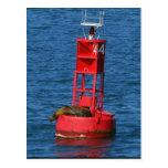 Sea Lion On Buoy Postcards