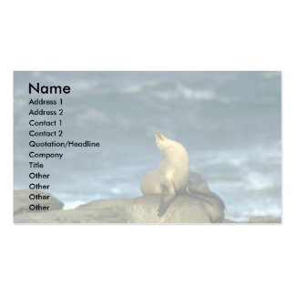 Sea Lion On Rock Pack Of Standard Business Cards