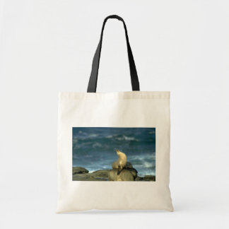 Sea Lion On Rock Tote Bag