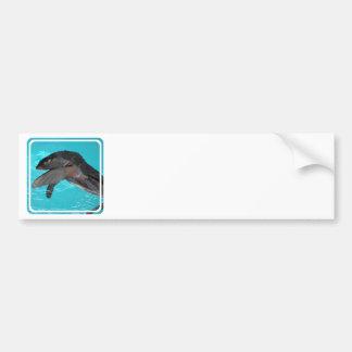 Sea Lion Playing Bumper Sticker Car Bumper Sticker