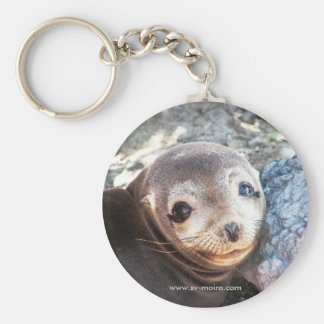 Sea lion pup, Isla Las Plazas, Galapagos Basic Round Button Key Ring