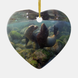 Sea lion pups playing underwater Galapagos Islands Christmas Ornament