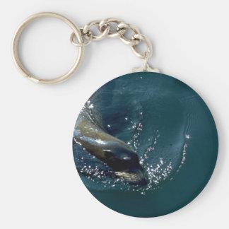 Sea Lion Swimming Basic Round Button Key Ring