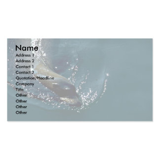Sea Lion Swimming Double-Sided Standard Business Cards (Pack Of 100)