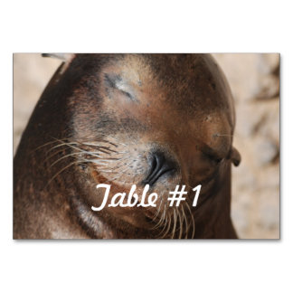 Sea Lion Table Cards