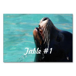 Sea Lion Table Card