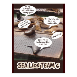 Sea Lion Team Six Postcard
