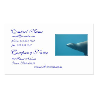 Sea Lion Underwater Double-Sided Standard Business Cards (Pack Of 100)
