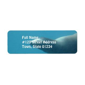 Sea Lion Underwater Return Address Label