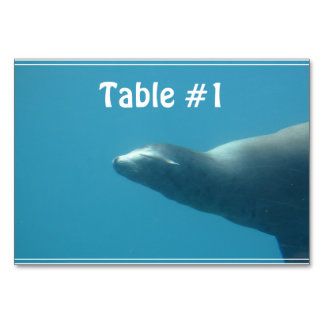 Sea Lion Underwater Table Card
