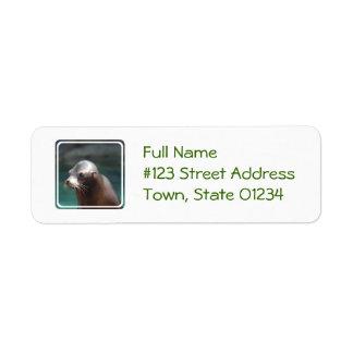Sea Lion with a Cute Face Return Address Label