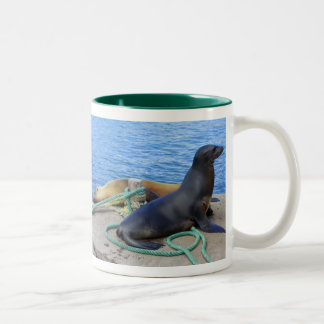 Sea Lions Two-Tone Mug