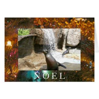 Sea Lions-Noel Greeting Card