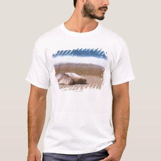 Sea Lions Resting on Beach T-Shirt