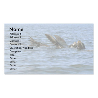 Sea Lions Swimming On Backs Business Card Template