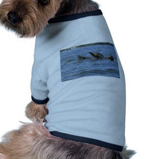 Sea Lions Swimming On Backs Ringer Dog Shirt